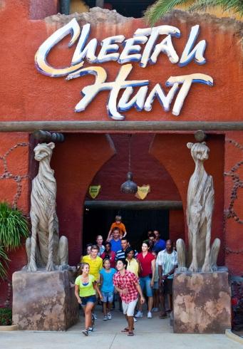 Cheetah Hunt photo 7