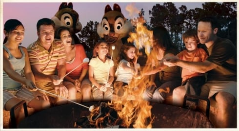 Chip and Dale's Campfire