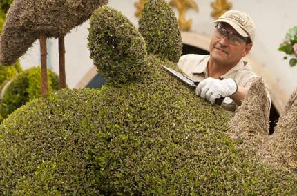 Disneyland horticulture Cast Member