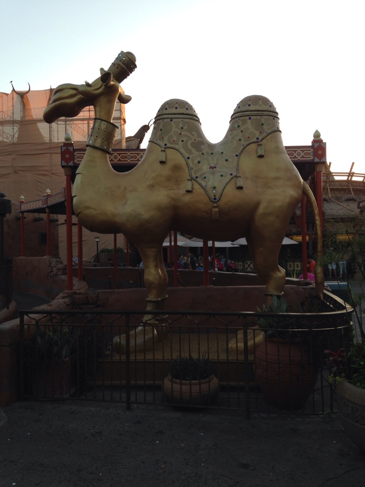 The Camels of Agrabah