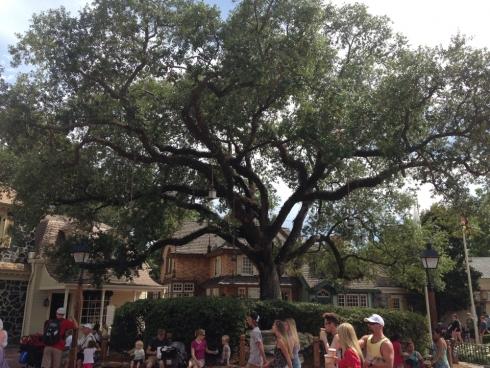 Liberty Square Liberty Tree