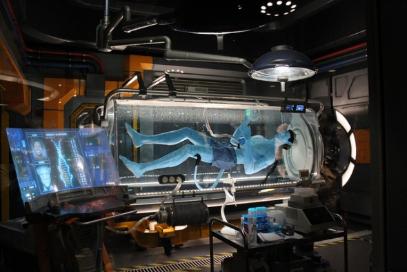 Avatar, Flight of Passage Disney