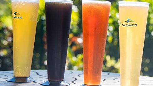 SeaWorld San Diego Brews