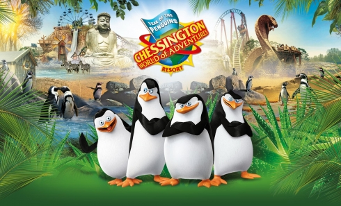 Year of the Penguins at Chessington