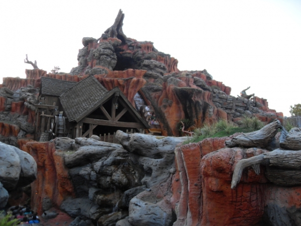 Taking selfies on Splash Mountain can be bad for your camera