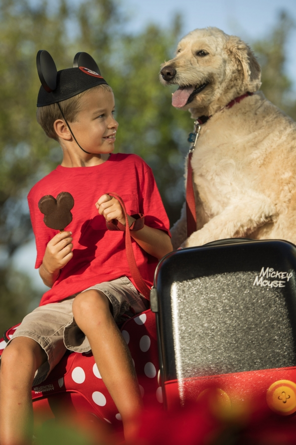 Boy with Mickey Ears and Mickey Ice Cream with Dog