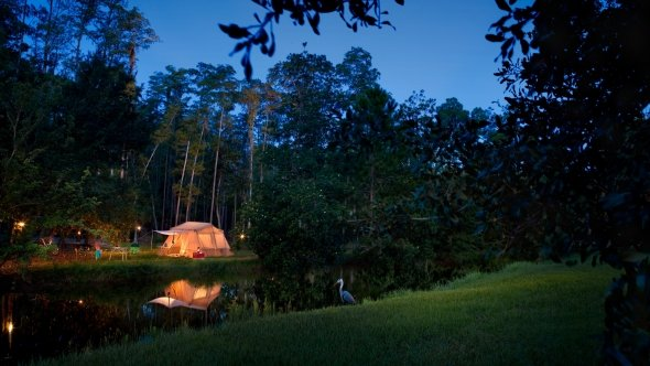 Nighttime Campsite at Fort Wilderness