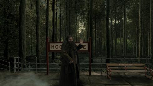 Hagrid in Hogsmeade