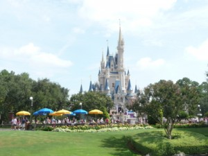 Disney's Magic Kingdom castle image