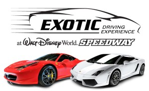 Exotic Driving Experience logo