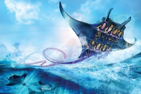 Manta at Seaworld Orlando. Image © SeaWorld Orlando.