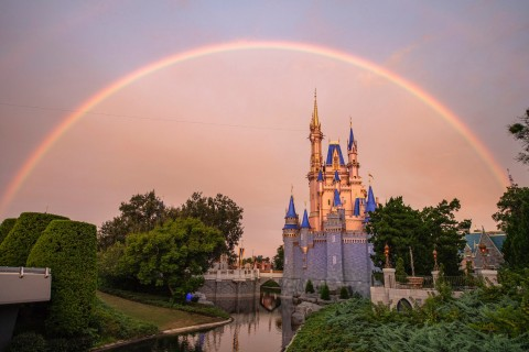 Magic Kingdom Rainbow