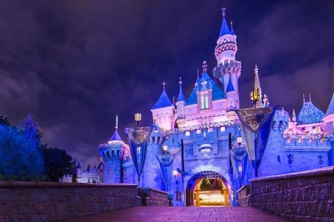Disneyland castle, Disney