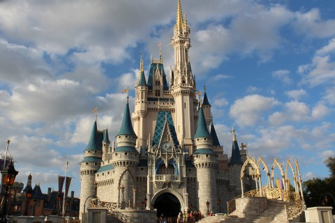Magic Kingdom, Castle