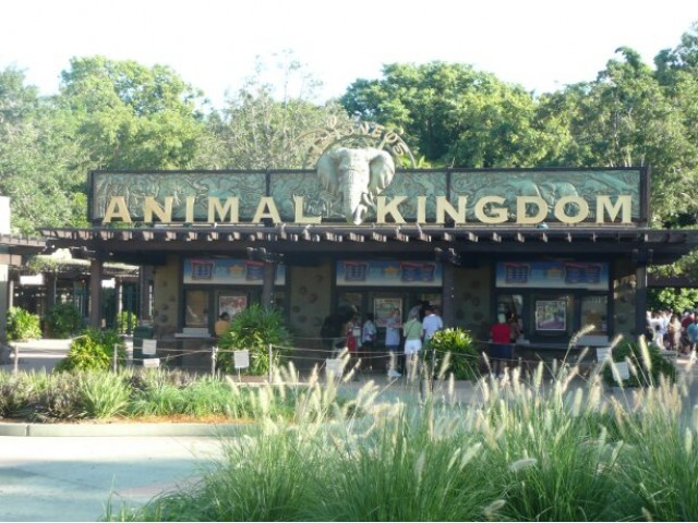 Disney's Animal Kingdom entrance