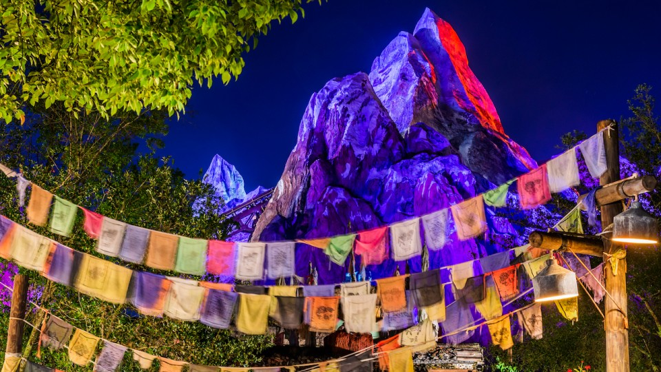 Expedition Everest and flags at night