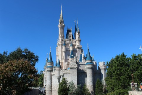 Magic Kingdom Castle. Theme Park Tourist